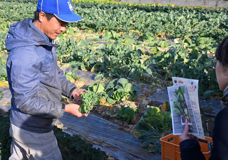 すくすく育つ野菜